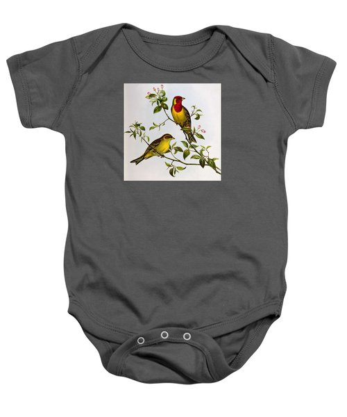 Red Headed Bunting Baby Onesie by John Gould
