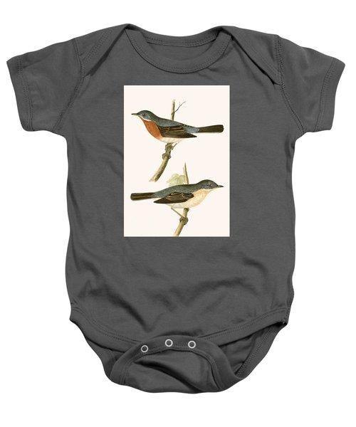 Sub Alpine Warbler Baby Onesie by English School
