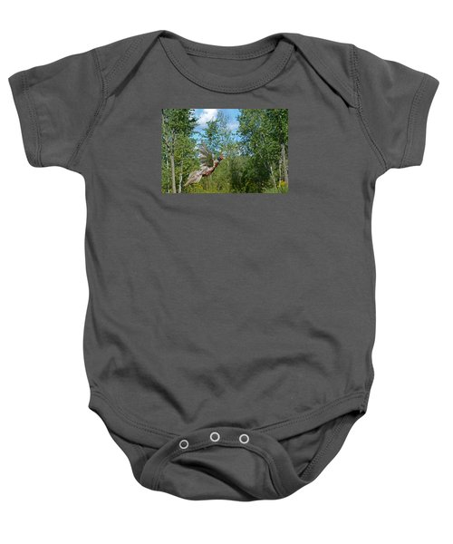 The Ring-necked Pheasant In Take-off Flight Baby Onesie by Asbed Iskedjian