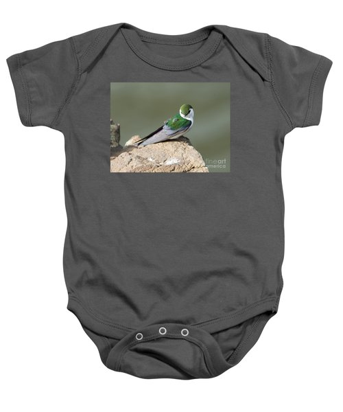 Violet-green Swallow Baby Onesie by Mike Dawson