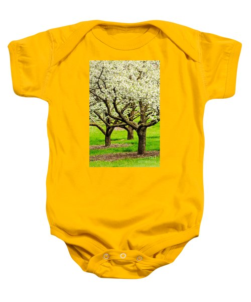 Apple Blossoms Baby Onesie by Joe Mamer