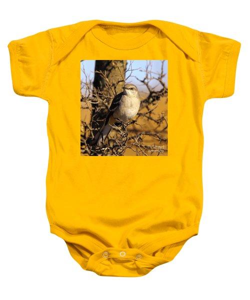 Common Mockingbird Baby Onesie by Robert Frederick