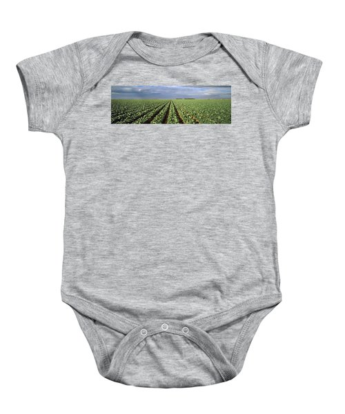 Agriculture - A Field Of Mid Growth Baby Onesie by Timothy Hearsum