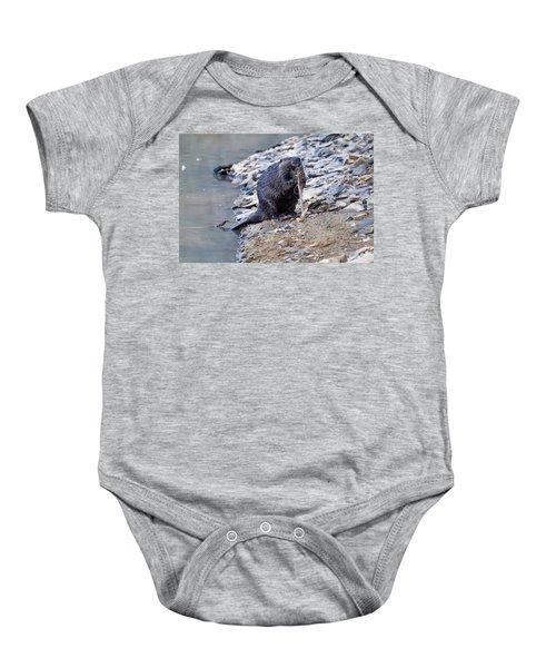 Beaver Sharpens Stick Baby Onesie by Chris Flees