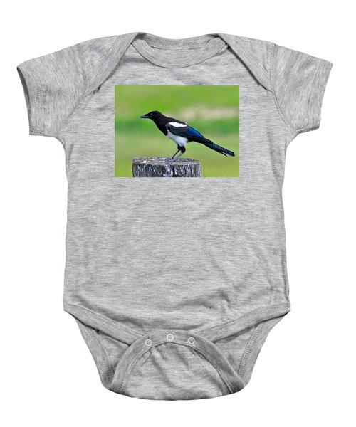 Black Billed Magpie Baby Onesie by Karon Melillo DeVega