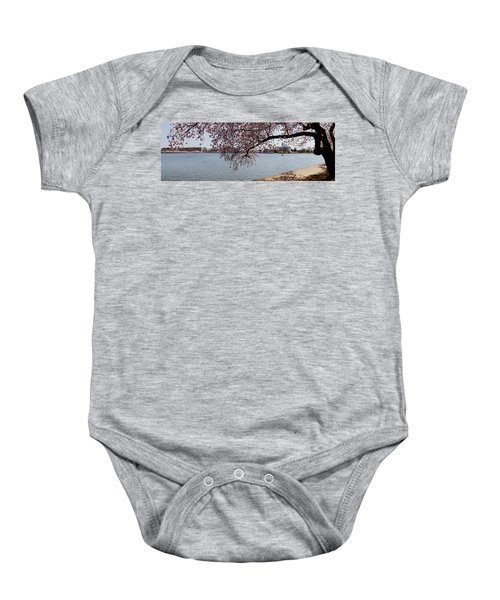 Cherry Blossom Trees With The Jefferson Baby Onesie by Panoramic Images