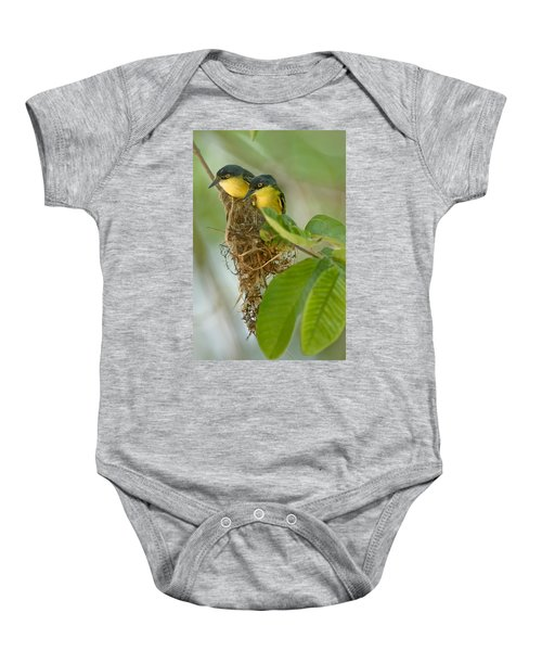 Close-up Of Two Common Tody-flycatchers Baby Onesie by Panoramic Images