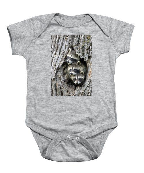 Raccoon Trio At Den Minnesota Baby Onesie by Jurgen & Christine Sohns