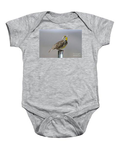 The Meadowlark Sings  Baby Onesie by Jeff Swan