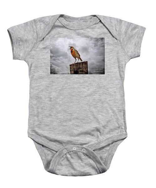 The Meadowlark's Song Baby Onesie by Elizabeth Winter