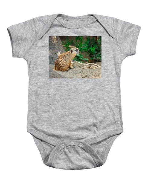 Watchful Meerkat Baby Onesie by Jon Woodhams