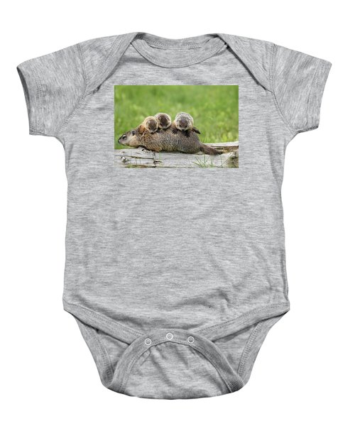 Woodchuck Carrying Young Minnesota Baby Onesie by Jurgen & Christine Sohns