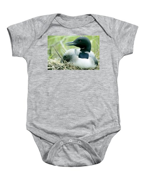 Common Loon, La Mauricie National Park Baby Onesie by Philippe Henry