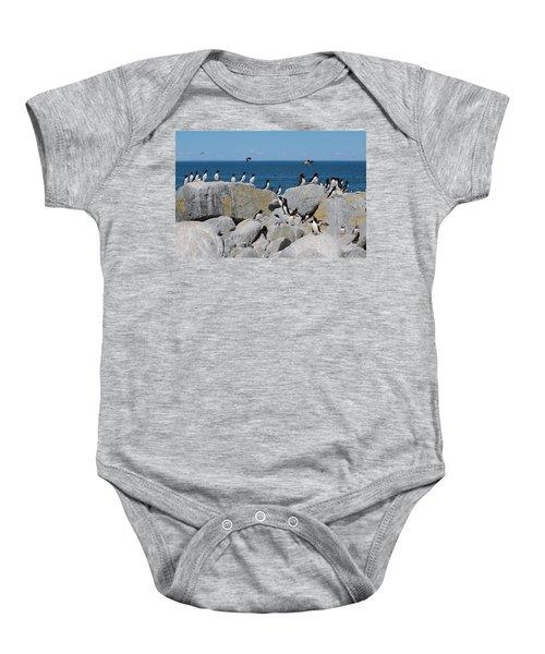 Auk Island Baby Onesie by Bruce J Robinson