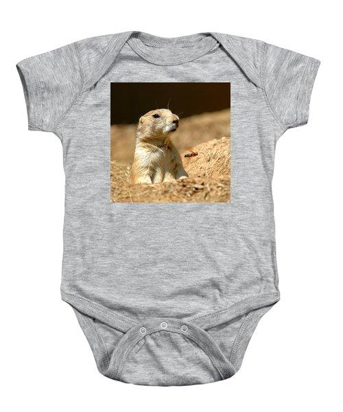 Prarie Dog Bee Alert Baby Onesie by LeeAnn McLaneGoetz McLaneGoetzStudioLLCcom