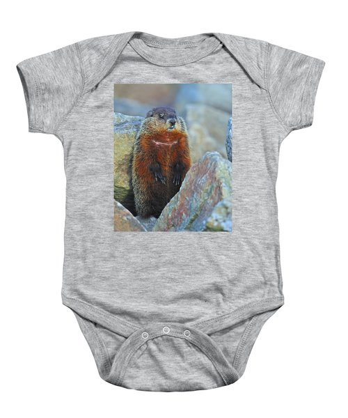 Woodchuck Baby Onesie by Tony Beck