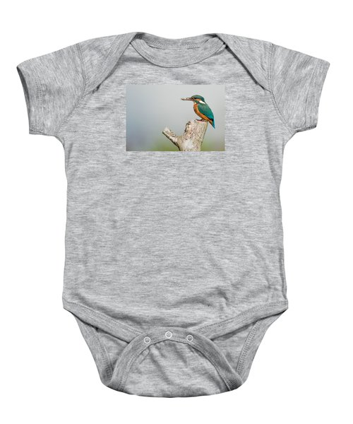 Kingfisher Baby Onesie by Paul Neville