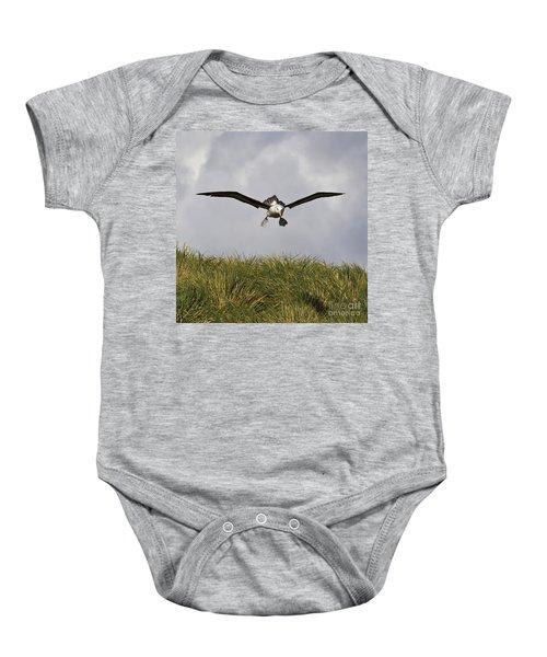 Black-browed Albatross Baby Onesie by Jean-Louis Klein & Marie-Luce Hubert