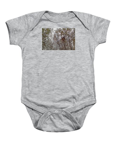 American Woodcock In October Foliage Baby Onesie by Asbed Iskedjian