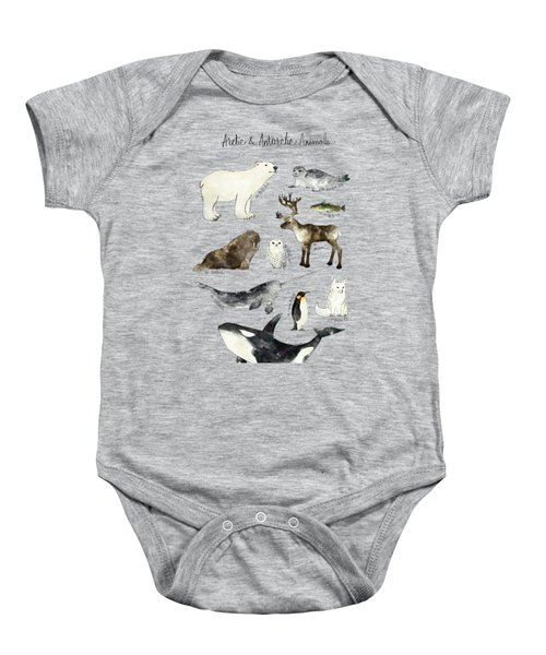 Arctic And Antarctic Animals Baby Onesie by Amy Hamilton