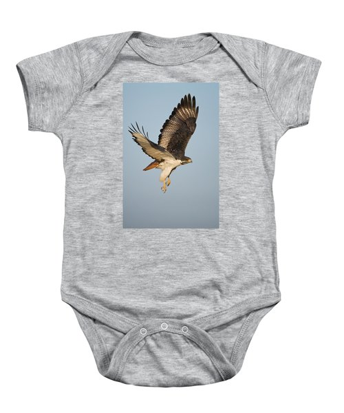 Augur Buzzard Buteo Augur Flying Baby Onesie by Panoramic Images