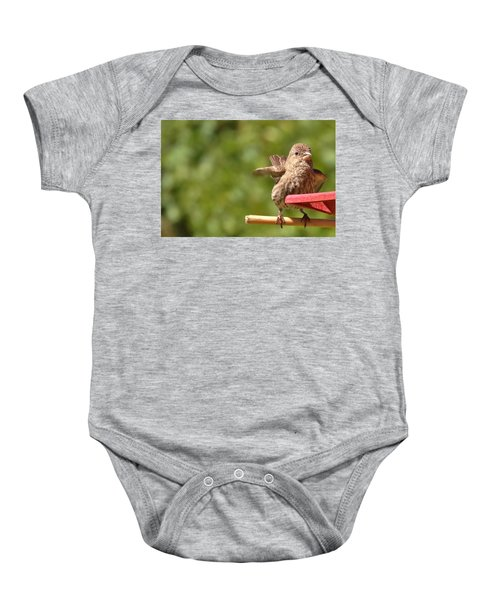Crossbill Female At Feeder        Summer       Indiana Baby Onesie by Rory Cubel