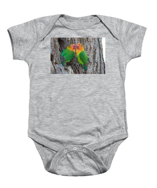 Fischers Lovebird Agapornis Fischeri Baby Onesie by Panoramic Images