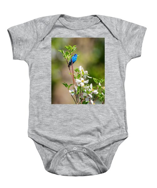 Indigo Bunting In Flowering Dogwood Baby Onesie by Bill Wakeley