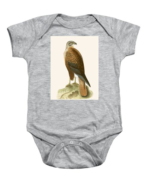 Long Legged Buzzard Baby Onesie by English School