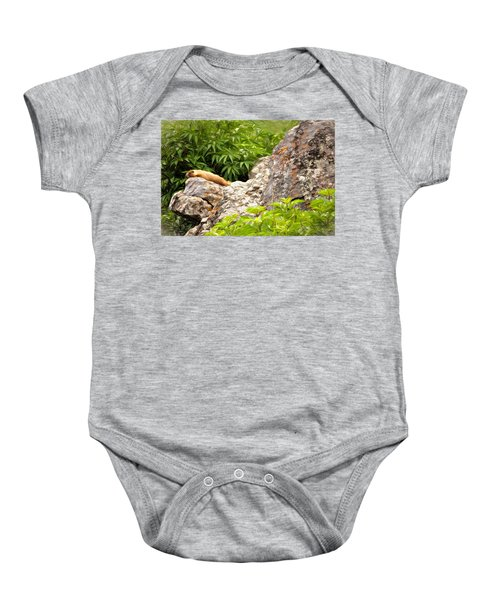 Rock Chuck Baby Onesie by Lana Trussell