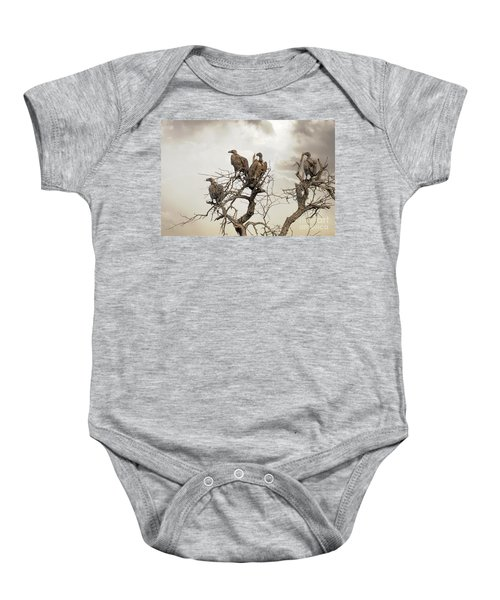 Vultures In A Dead Tree.  Baby Onesie by Jane Rix