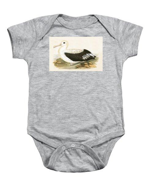 Wandering Albatross Baby Onesie by English School