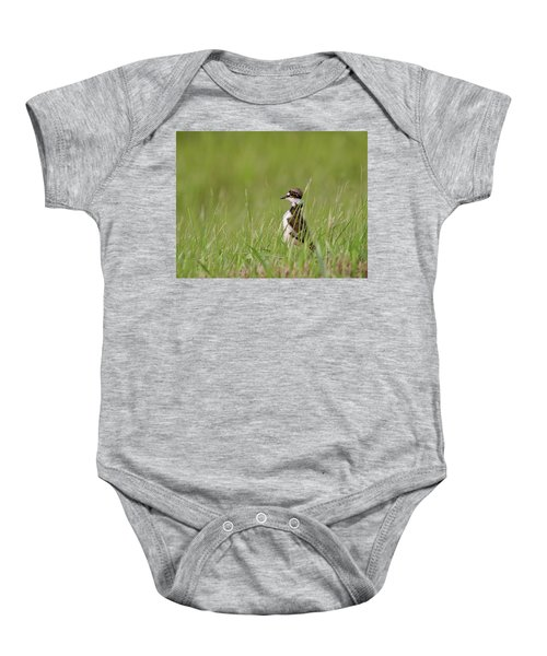 Young Killdeer In Grass Baby Onesie by Mark Duffy