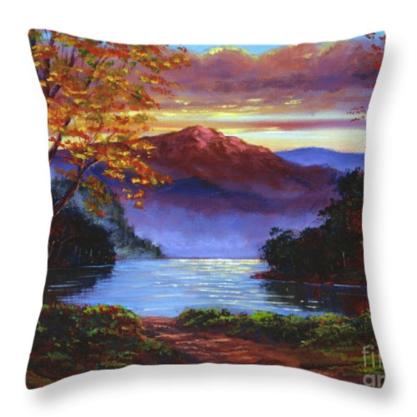 A Moment Of Softness Throw Pillow by David Lloyd Glover