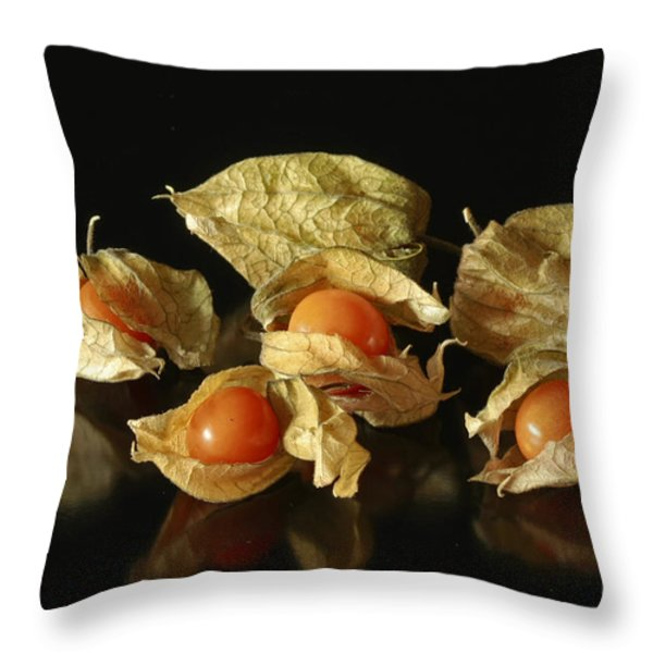 A Taste Of Columbia Physalis Aztec Golden Goose Berry Throw Pillow by Inspired Nature Photography By Shelley Myke