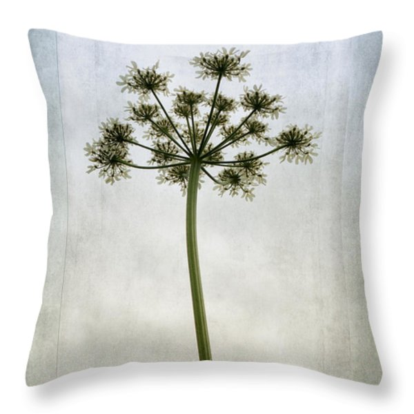 Aethusa Cynapium Throw Pillow by John Edwards