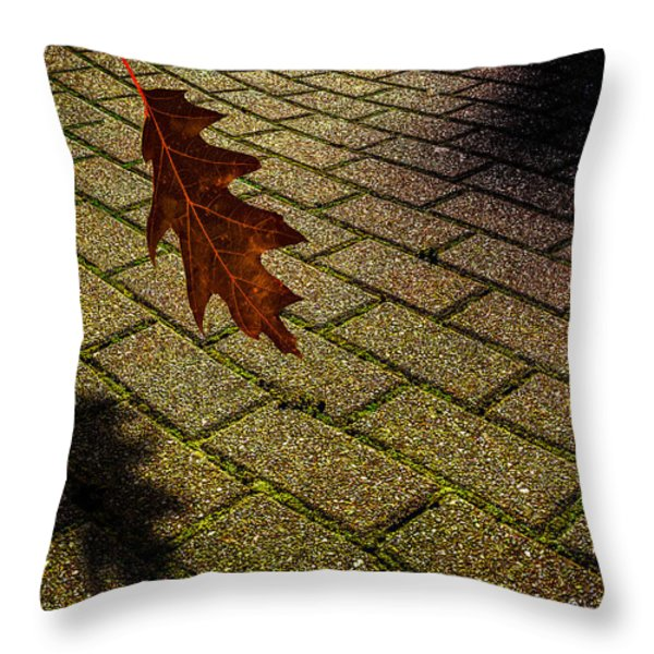 Autumnal Equinox Throw Pillow by Bob Orsillo