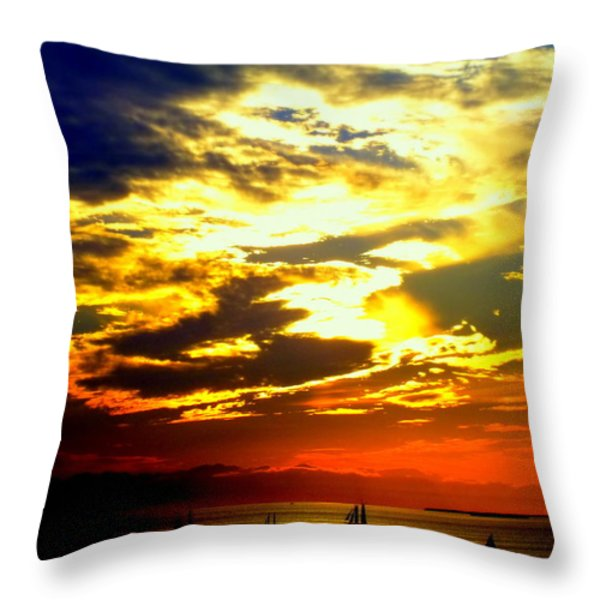 Imagine Throw Pillow by Karen Wiles