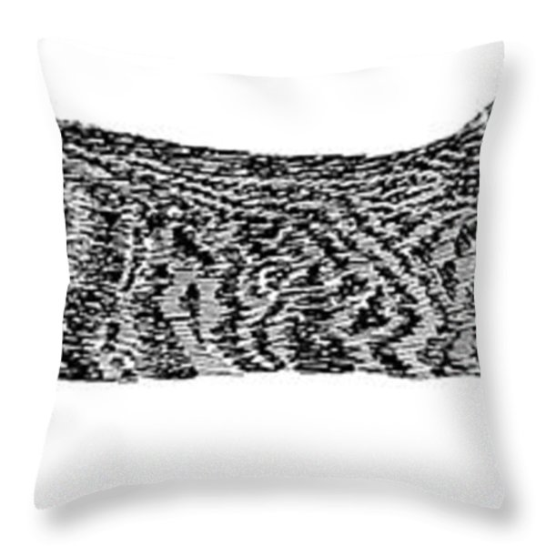 Manx Cat Sleeping Throw Pillow by Jack Pumphrey
