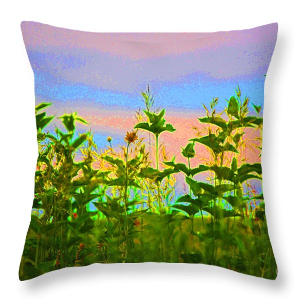 Meadow Magic Throw Pillow by First Star Art