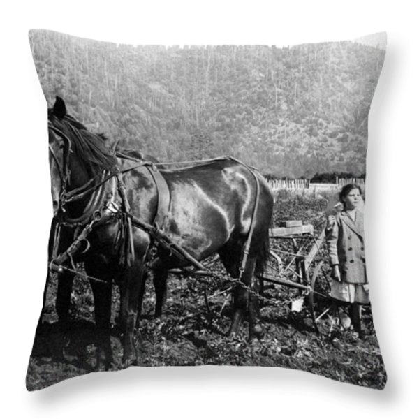 PLOWING the LAND c. 1890 Throw Pillow by Daniel Hagerman