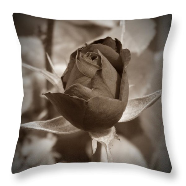 Rosebud Sepia Throw Pillow by Chalet Roome-Rigdon