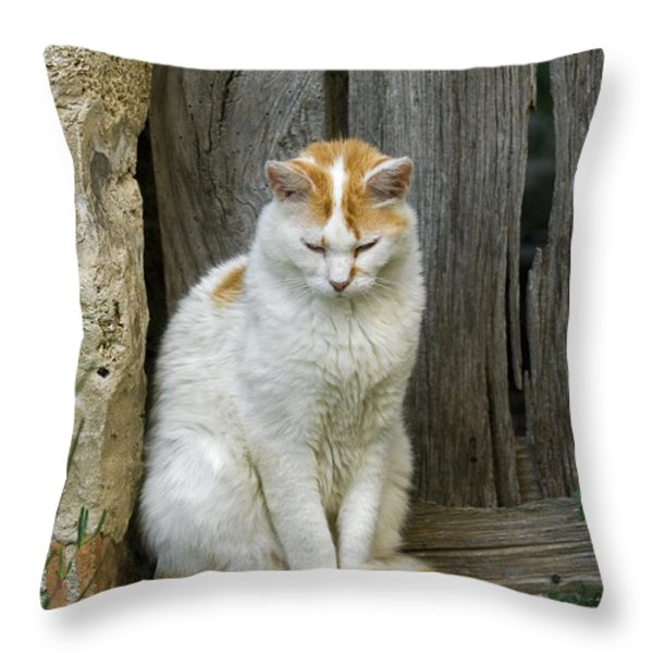 080801p076 Throw Pillow by Arterra Picture Library