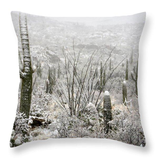 A Desert Snow Day  Throw Pillow by Saija  Lehtonen