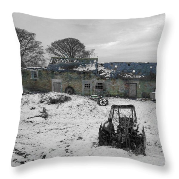 Abandoned To Nature Throw Pillow by David Birchall