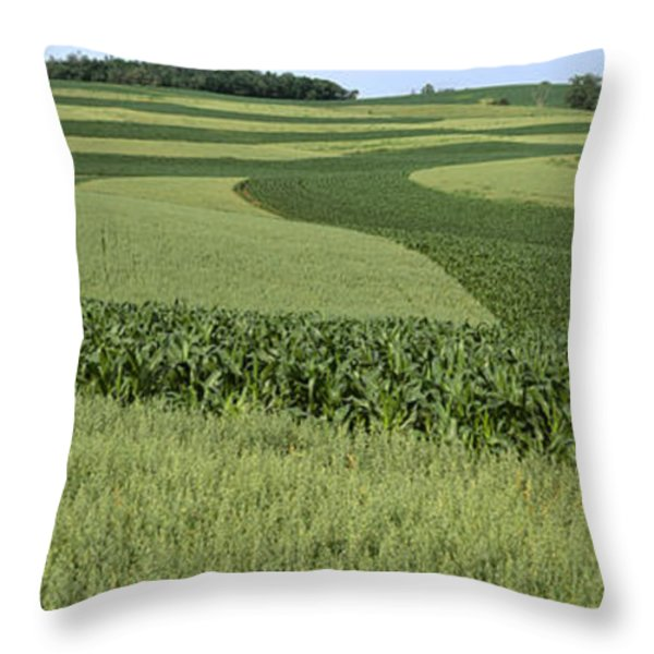 Agriculture - Contour Strips Of Mid Throw Pillow by Timothy Hearsum