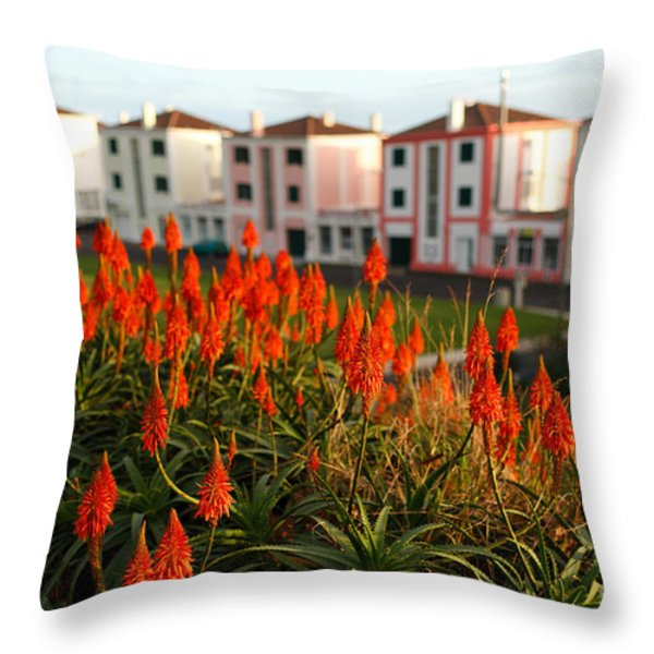 Aloe Flowers Throw Pillow by Gaspar Avila