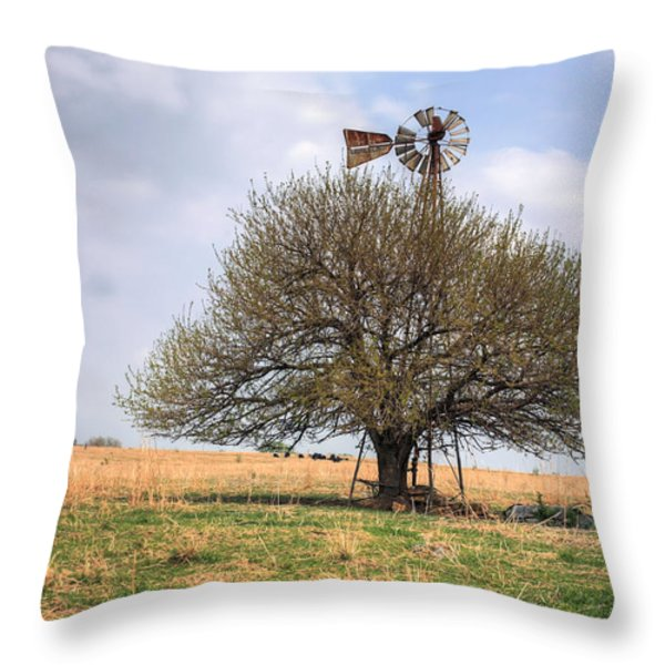 Americana Throw Pillow by JC Findley