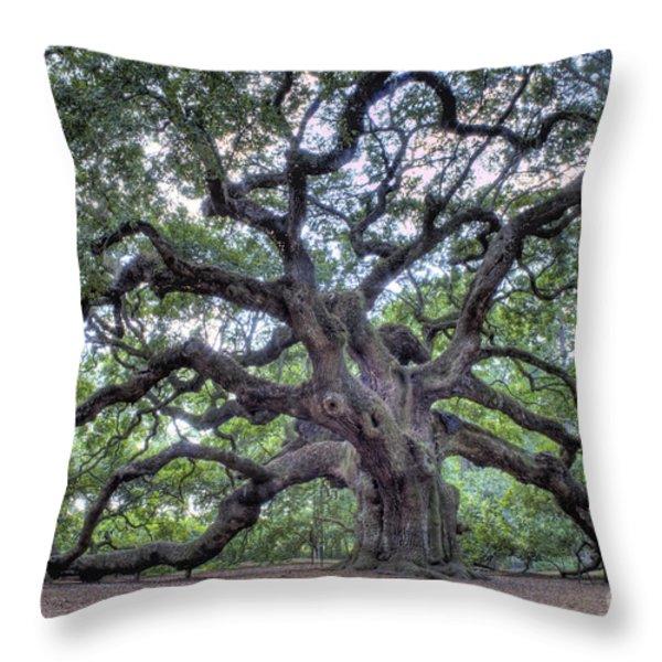 Angel Oak Throw Pillow by Dustin K Ryan