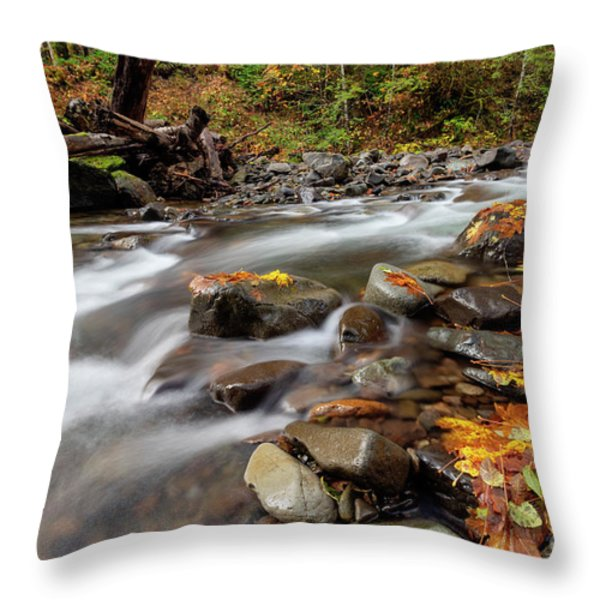 Around The Bend Throw Pillow by Mike  Dawson